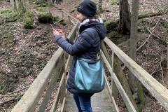 Auf der Brücke, mitten im Wald
