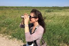 Bird-Watching-Burgenland